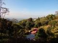 platation-stay-munnar-olivebrook