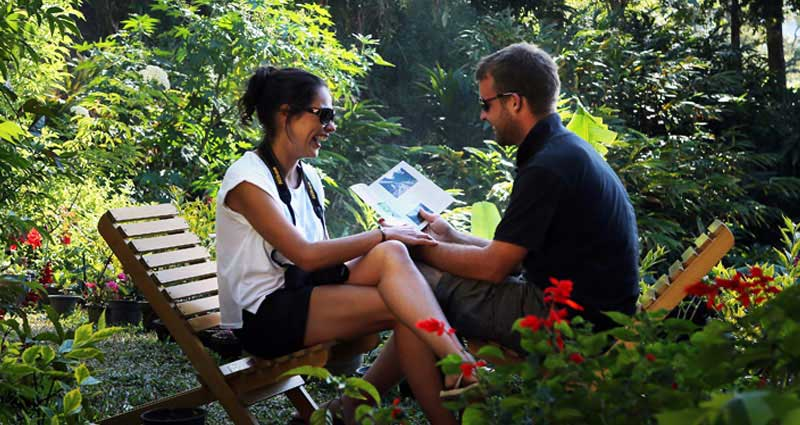 honeymooners-munnar-olivebrook