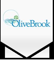 olivebrookmunnar.com