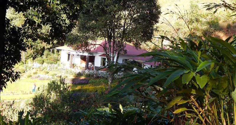quickfacts-munnar-olivebrook